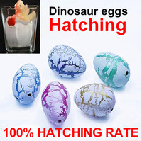 Novel toy dinosaur eggs soaked water expansion toy Dinosaur eggs hatching egg-HOT
