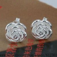 925 sterling silver earrings , 925 silver fashion jewelry , Flowers /czfalqma fppaogwa E023