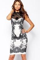 saias femininas 2014 Sleeveless Elegant High Neck Glitter Lace Body-Conscious Vintage Dress women casual dress vestido de renda