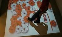 Retailer for  for Interactive Floor system, dancing floor, 3D interactive projection display system
