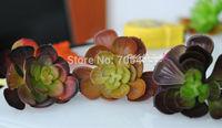 12cm * 10cm  Big Artificial  Echeveria Succulent New Color Autumn Series Bare Stem Succulent Plant Picks Free Shipping