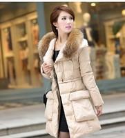2014 Winter Jacket Women Coats New Women Down Parkas Large Raccoon fur collar hooded coat woman outerwear Overcoat YS8723