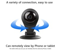 2014 new Pan & Tilt IP/Network Camera with Two-Way Audio and Night Vision (Black)