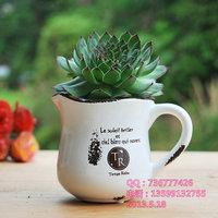 Special mini white perforated balcony,fleshy succulents desk creative small pot,retro ceramic pots,free shipping