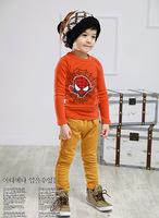 Free shipping 100% cotton Children long-sleeved t-shirt boys/Kids hoodie children's animal cartoon t-shirt 5 pcs/lot