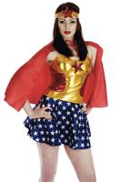 2014 new arrival sexy women's Superhero  costumes halloween costumes fancey dress 15133