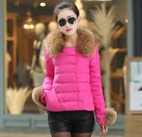 Fashion Parkas Coat Fur Hood Parka Winter candy color down Coat Women Nantes short jackets