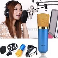 Hot Condenser Microphone Mic Sound Studio Recording Dynamic & Shock Mount Blue New B11 SV008222