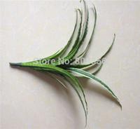 "Orchid Leaf Bunch 10PCS/LOT 34cm/13.39"" Length Artificial Silk Phalaenopsis Plants Butterfly Orchid Leaf Grass Wedding Flower"