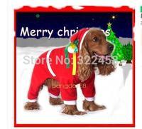 big dog christmas suits