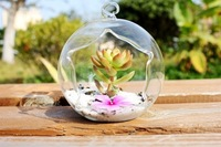 Free Shipping Glass pots ball  Hanging Vase Creative Glass Candle Holder Home Decorative Christmas gp016 Decorative