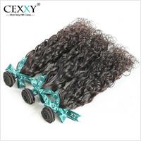 6A Cexxy Hair Brazilian Virgin Hair Weaves Brazilian Water Wave/Natural Wave Hair 3PCS/LOT Human Hair Weave Shipping Free