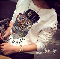 Free Delivery. 2014 new listing, women's fashion novel owl Long Sleeve Shirt