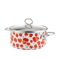 22cm Non-stick Flat-bottomed Soup Pot Milk Pot Steamer Pot Enamel Free Shipping With Transparent Cover