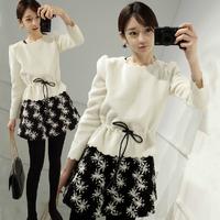 2014 new autumn ladies slim slim Korean woolen  sleeve two piece suit thickened wool dress son