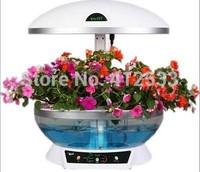 New year hydroponics domestication DIY planters