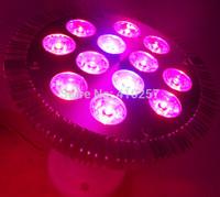 36W E27 Par Led grow light for hydroponics lighting