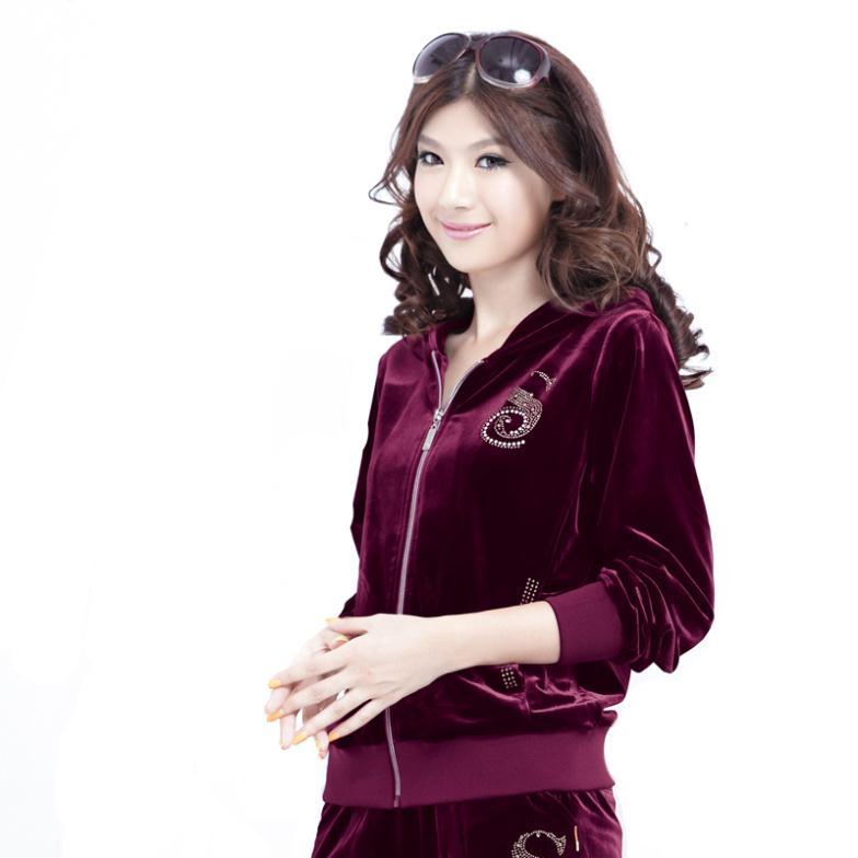 Gold velvet sportswear set female spring and autumn sweatshirt casual set velvet sports set female(China (Mainland))