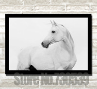 Free Shipping 40*50cm Home Decor White Horse Standing Here Means A Good Friend Wall Pictures Canvas Painting Printed Canvas