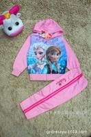 Wholesale Frozen Elsa Anna Children's Clothing Section Set Girls Snow Spring Romance Cotton Long-sleeved Hooded Sweater Set