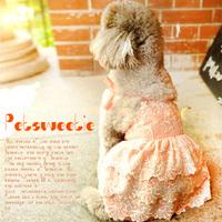 Teddy pet dog clothes, dog dress princess dress tutu Bichon dog dog wedding dress skirt