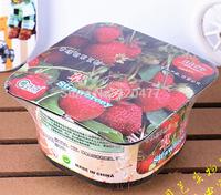 Weird flowers garden - Strawberry - (box + fertilizer + seeds)