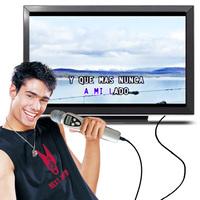 FREE SHIPPING- Portable Karaoke Microphone SD Karaoke Microphone (SD1+)