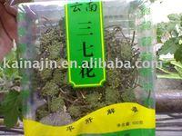 Yunnan sanqi flower tea