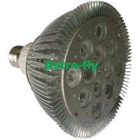 Power LED spot light Par38 12x2w