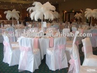 """wholesale 400pcs/lot 12-14"""" Ostrich Feather Plume FREE SHIPPING"""