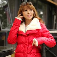 Winter women's slim large fur collar short down coat outerwear design