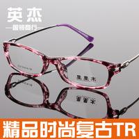 Fashion vintage tr90 glasses non-mainstream leopard print eyeglasses frame
