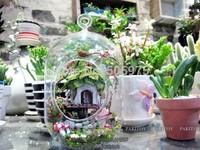 Diy glass ball house mini assembling model jungle