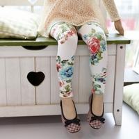 Spring female child 100% big flower cotton children thin trousers baby legging