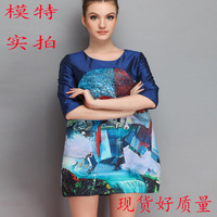 Plus Size 2014 autumn women's vintage print half sleeve a clothing women Autumn and winter Free shipping