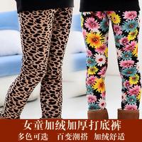 Female child plus velvet thickening 2014 legging trousers child autumn and winter ankle length trousers children's clothing