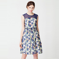 2014 [ Hot ] women's summer fashion perspective gauze tutu print sleeveless causal dress beach dress plus size XL-4XL