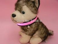 global sell like hot cakes 150pcs/lot flashing LED dog collar, led pet collar