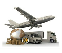 SHIPPING COST FOR CHINA POST, HK POST, EMS, DHL, FEDEX, UPS OR SPECIAL EXTRA FEE