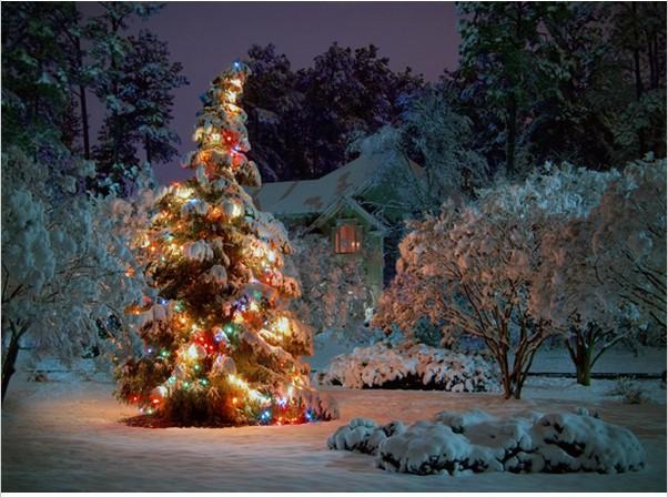 زيتة عيد الميلاد 10x10FT-Snow-Winter-Night-Cottage-Baubles-Light-font-b-Christmas-b-font-font-b-Tree-b