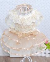 New arrived Classic Champagne Pet Wedding Dress Dog  Dress Dog Clothing XS S M L
