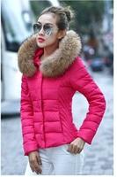 2014 autumn and winter slim large fur collar women's down coat female short design thin outerwear
