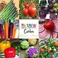 8 kinds of Rainbow Kid Garden Vegetable combinations 825 seeds, organic vegetable seeds, Home Decor BIG gardener, Free Shipping