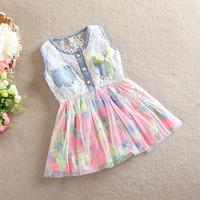 3T-6T 2014 Fashion Floral Summer Dress Little Girls Sleeveless Lace Sundress Korean Style Costume