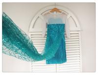 1pcs/1lot,Elsa Frozen Dress Elsa Dress For Girl new 2014 Princess Dresses baby & kids summer Girl Dress Children girls' Clothing
