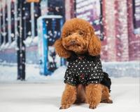 Free shipping 5 pcs/lot Pet Dog Cat clothes doggy hoodies puppy Polka Dot dress pet clothing dogs cats skirts coats