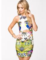 Elegant Printing Women's Bodycon Mini Dress,Tank Sleeveless Bare Midriff,Stretchy Ladies' Sheath Evening Party Nightclub Dress