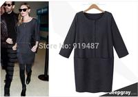 New Europe fashion 2014 casual dress women vestidos O-neck streaight winter dress Free Shipping 6068
