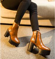 winter women platform boots high heeled 2014 new brand ladies autumn ankle boots thick high heels woman martin boots WSH021