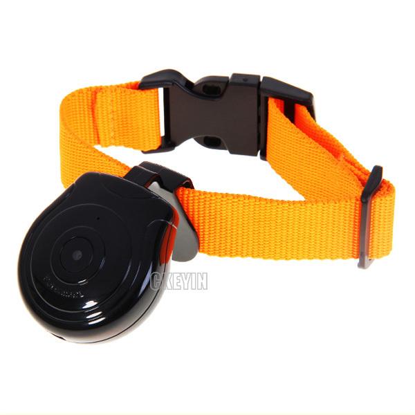 Brand New Mini Pet Camera Dog Cat LCD Video Camera Recorder Pet Products Collar Accessories CA003H-S30(China (Mainland))
